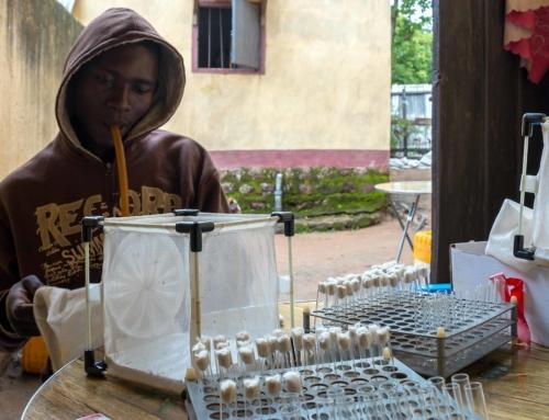 """20 janvier 2020 – """"Une étude entomologique pionnière menée dans la partie Sud-Ouest de la République Centrafricaine a permis de réactualiser, après plus de 40 ans, les données sur la sensibilité des vecteurs du paludisme aux insecticides et, pour la première fois, mettre en évidence les mécanismes impliqués dans ces résistance"""""""