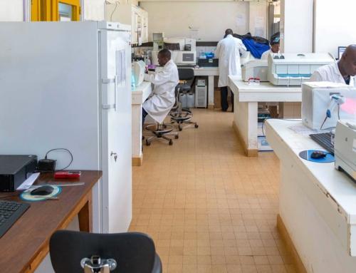24 janvier 2020 – L'institut Pasteur de Bangui surveille l'Hépatite B en République Centrafricaine
