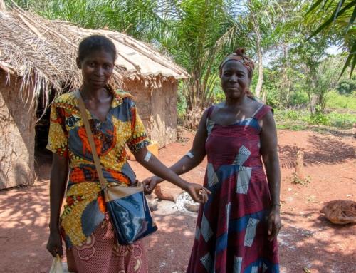 3 juin 2020 – Une nouvelle mutation de Plasmodium falciparum dévoilée en République Centrafricaine.
