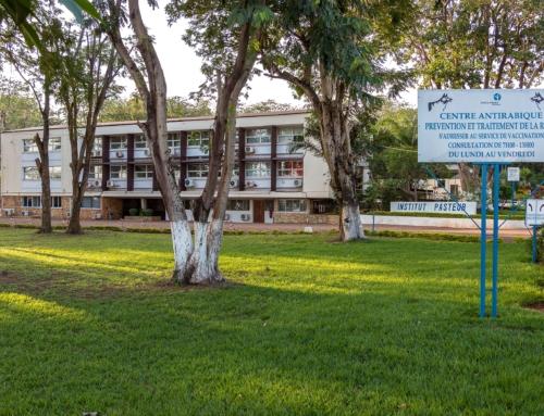 28 septembre 2020 – Journée Mondiale contre la rage : Quel rôle joue l'Institut Pasteur de Bangui en République Centrafricaine ?