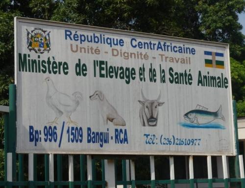 vendredi 2 octobre 2020 – Cérémonie de lancement de la campagne de vaccination des animaux de compagnie contre la rage à Bangui.