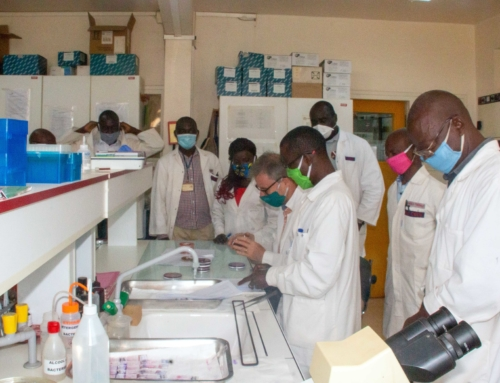09 novembre 2020 – La toute première série de cas de septicémie néonatale à Burkholderiacenocepacia IIIA jamais rapportée en République centrafricaine