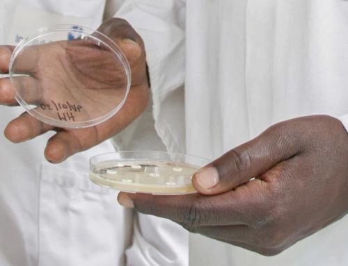 04 mars 2021 – Comment les Instituts Pasteur à travers le projet SARA développent une expertise sur les sujets d'antibiorésistance en République Centrafricaine